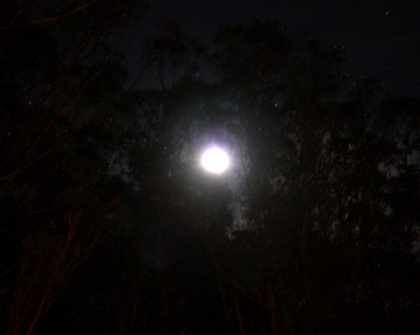 Full moon, December 21 2010