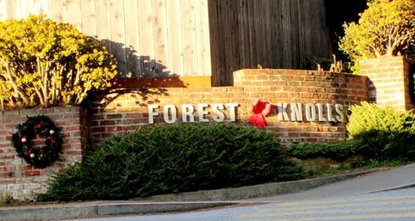 forest knolls Muir gardens landscaping landscape design/construction i confirm this is a personal project inquiry and not a promotional message or solicitation.