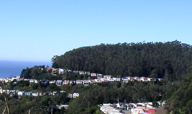sutro-forest-south-view2