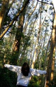 forest-girl-3a