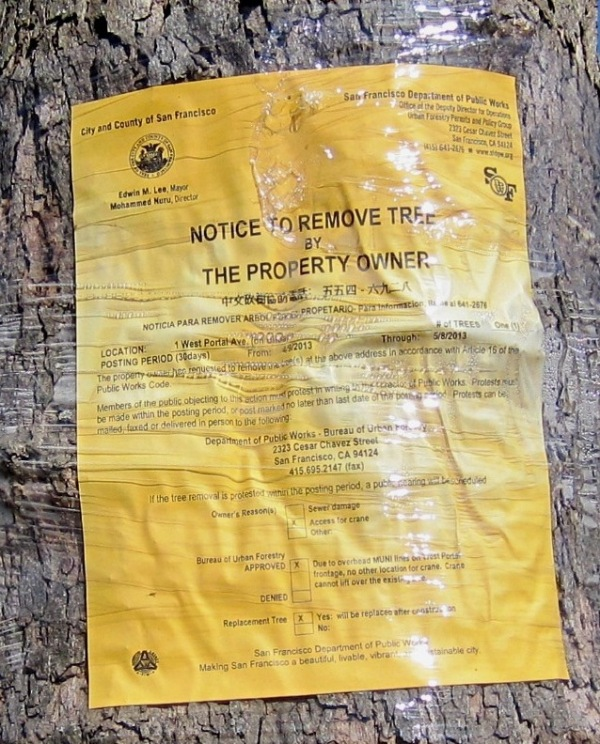 tree removal notice
