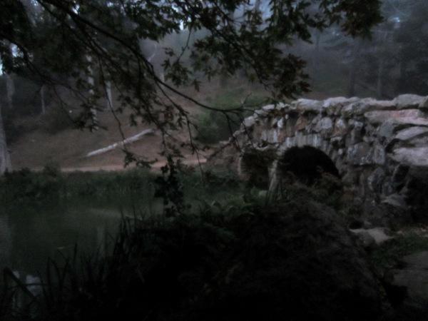 stow lake twilight