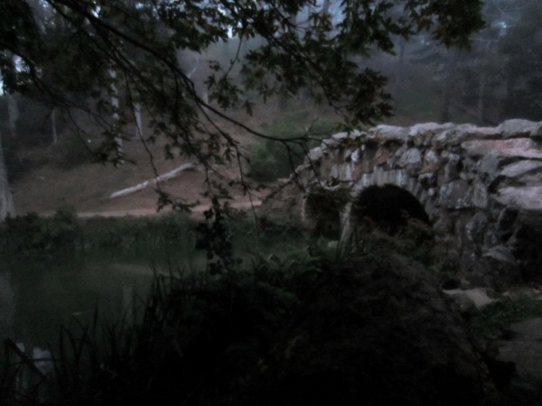stow lake twilight