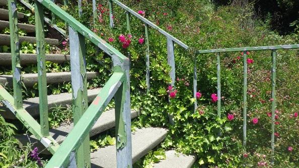 Glenhaven gardensteps