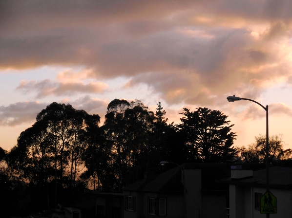 forest knolls sunset