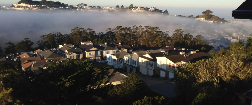 Forest Knolls as the fog floats in. Photo credit: Erika Burke