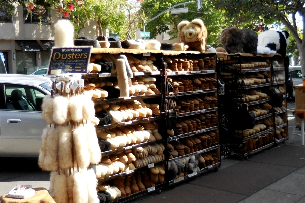 wooly rascals sheepskin stuff at West Portal