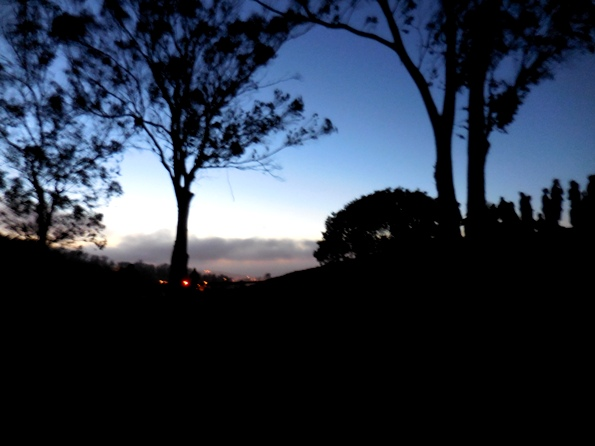 pics31 008 fog rolling in from the west 7.38 pm