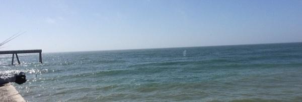 whale spout of Pacifica Pier 4782